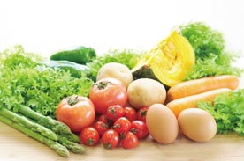 有機野菜たまごセット画像